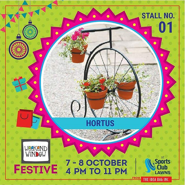 Set your garden apart by creating a unique outdoor space with garden accessories and garden accents . They have garden accents and lawn ornaments with bright and vivid designs to help you personalize your garden. Garden accessories come in all shapes and sizes, find the prefect garden accents for your garden. diwalipreparations.#hortusmygarden #weekendwindow #theideabaginc #curatedevent #diwalishopping #weekendwindowfestive  #prediwali #shopping #diwaligifting #gardendecor #sportsclubofgujarat #diwalivibes #festivevibes #festivities #whatwomenwant #shoptillyoudrop #kidsactivities #workshops #art  #craft #Foodaholics #Fun #Entertainment #music #enjoyement #love #foodporn #foodbitting #Fleamarket #flowers